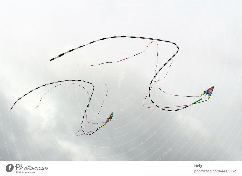 Drachentanz - zwei Lenkdrachen mit Schweif fliegen in Formation vor wolkigem Himmel Drachenfest Wolken Bänder Freude Spaß Freizeit & Hobby Wind Außenaufnahme