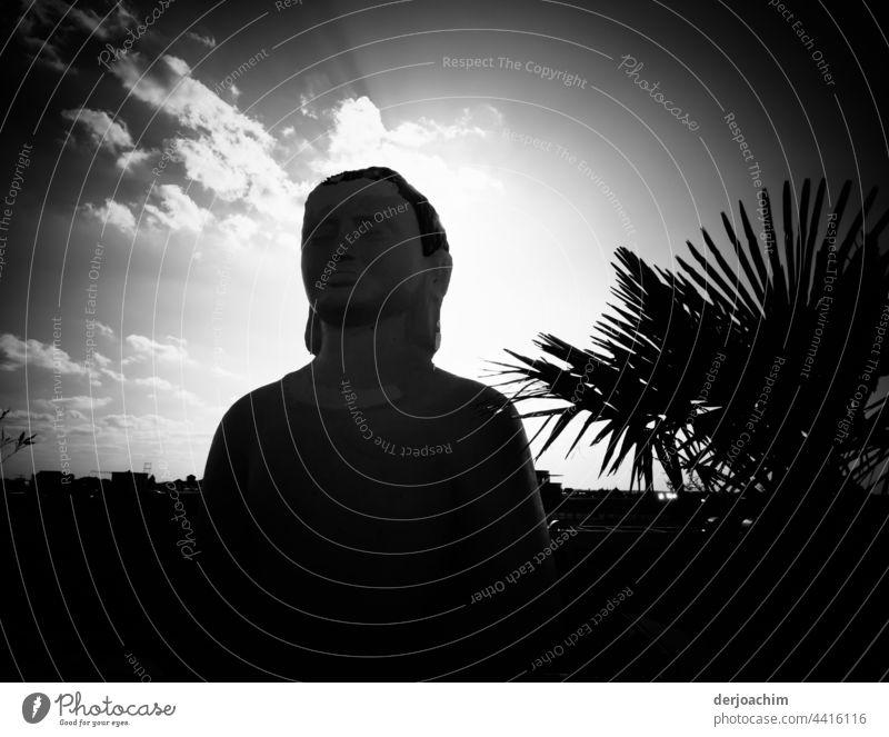 Abendstimmung auf einem Parkdeck Restaurant.  Eine Große Buddha Figur, hinten von der untergehenden Sonne angestrahlt, sowie ein großer Farnbusch rechts bei der Figur steht und kleine Wolken am Abendhimmel die  das ganze überstrahlen.
