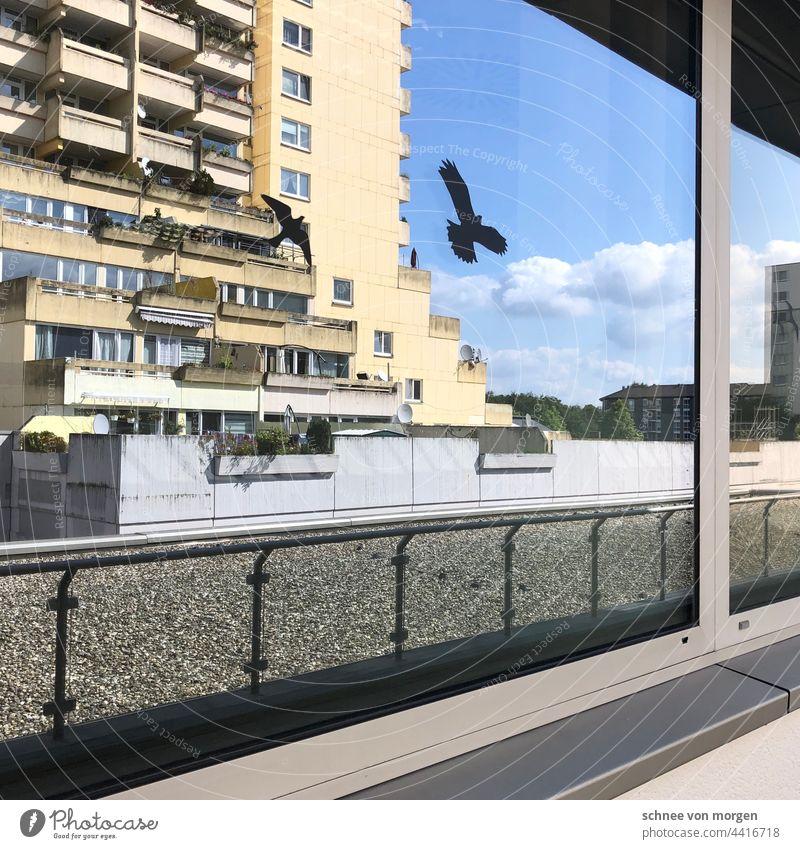 Orte des Studierens ll Hochhaus Architektur Stadt Licht Glas Reflexion & Spiegelung Farbfoto Gebäude Fassade Fenster Bochum Uni Bauwerk Glasfassade Haus