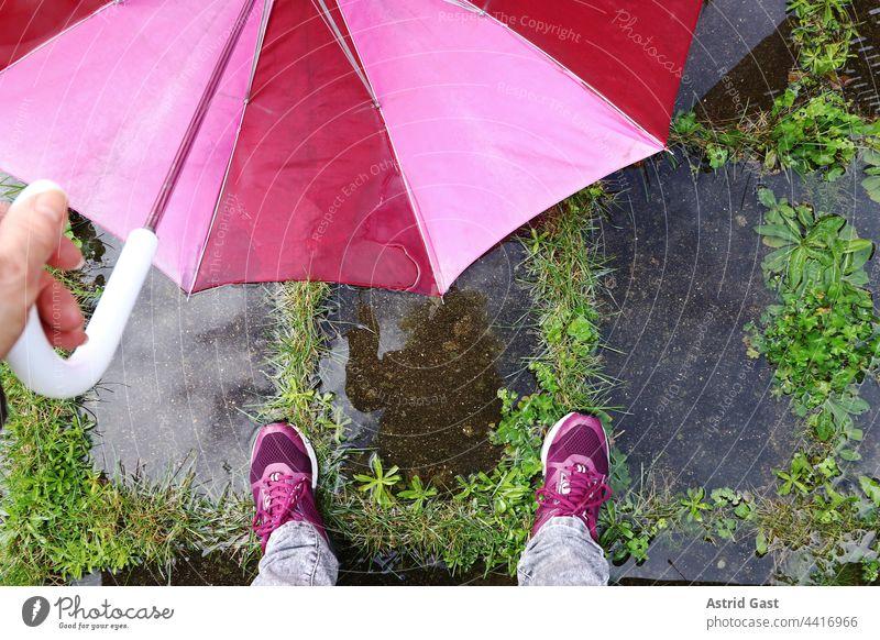 Die Füße einer Frau mit einem Regenschirm auf dem nassen Boden regenschirm frau füße beine pfütze wasser hand draußen regenwetter kalt feucht schuhe boden
