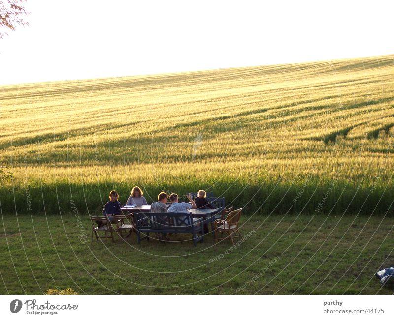 Ein Tisch vorm Kornfeld Sonne Feld Tisch Rasen Frühstück Korn Mahlzeit