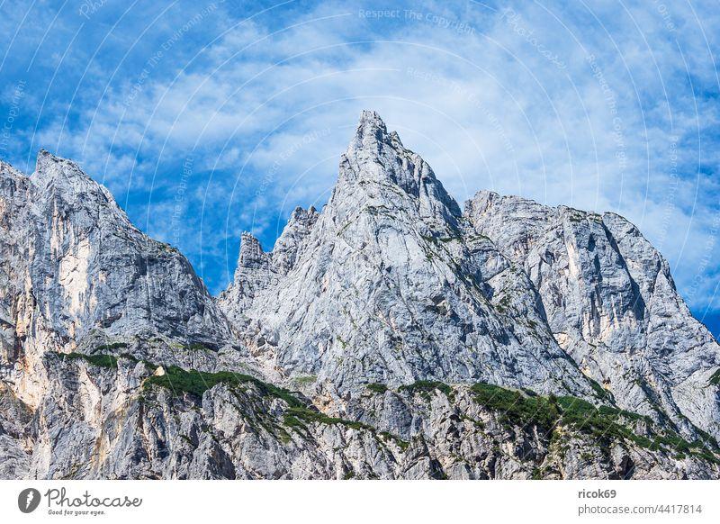 Blick auf die Mühlsturzhörner im Berchtesgadener Land in Bayern Ramsauer Dolomiten Klausbachtal Alpen Gebirge Berg Baum Wald Landschaft Natur Sommer Wolken