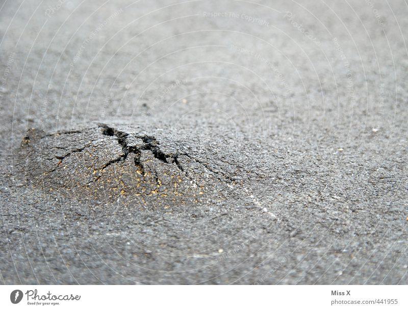 aus den Tiefen... Straße Wege & Pfade Stimmung Kraft Wachstum Beginn kaputt Verfall Verkehrswege Riss Straßenbelag Loch brechen Willensstärke Teer unterirdisch
