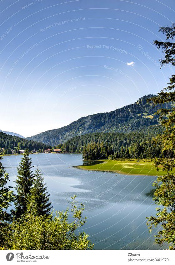 Spitzingsee Fahrradfahren Natur Landschaft Wolkenloser Himmel Sommer Schönes Wetter Sträucher Wald Alpen Berge u. Gebirge Seeufer ästhetisch Ferne natürlich