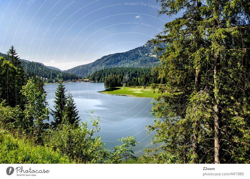 Spitzingsee Natur Landschaft Wolkenloser Himmel Sommer Schönes Wetter Baum Sträucher Alpen Berge u. Gebirge Seeufer ästhetisch Ferne natürlich blau grün ruhig