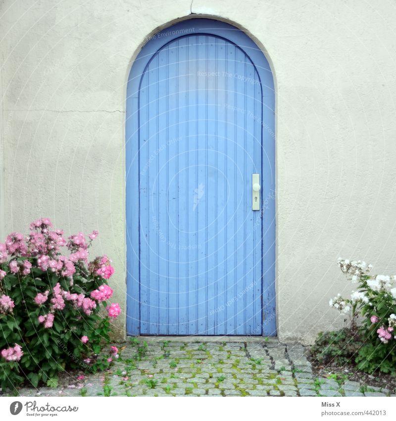 Blaue Tür blau Blume Haus Wand Mauer Fassade Tür geschlossen Tor Eingang Topfpflanze Gartenweg