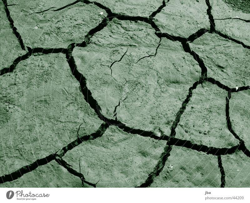 green Wasser dreckig trocken Spalte getrocknet Seegrund