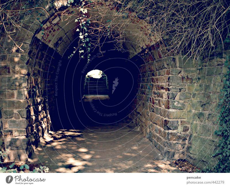 tunnelblick Einsamkeit dunkel Wand Mauer Stein Brücke Sicherheit Zeichen Schutz Tor Tunnel Bahnhof Erschöpfung krabbeln Altstadt Lichtspiel