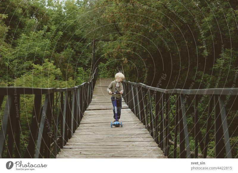 Ein kleiner blonder Junge fährt mit einem Tretroller auf einer Hängebrücke vor einem Hintergrund aus kaum vergilbtem, dichtem grünen Laub. Kind Natur Kickroller