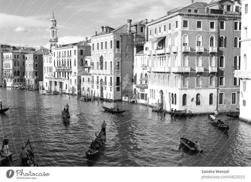 Schwarz/Weiß Fotografie von Venedig Canal le Grande historisch Städtereisen Sehenswürdigkeiten Kanal Wasserstraßen Gondeln Hochwasser Aqua Alta Schifffahrt