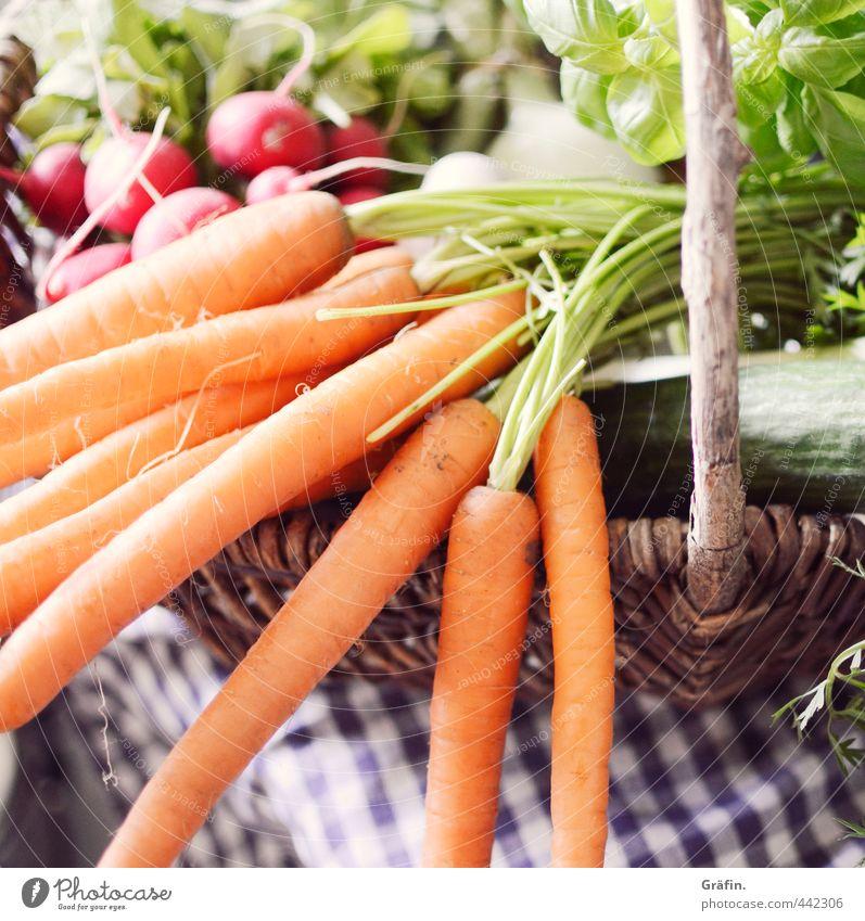 Kuschelgruppe Lebensmittel Gemüse Salat Salatbeilage Gesundheit lecker natürlich grün orange Appetit & Hunger Energie Fitness genießen kaufen Natur Umwelt
