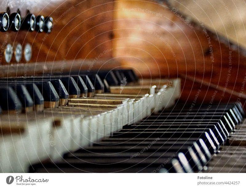 Lost Place - diese alte Kirchenorgel hat schon seit Jahrzehnten ausgedient. Ein stummes Musikinstrument ist immer traurig. verlassen kaputt Vergänglichkeit