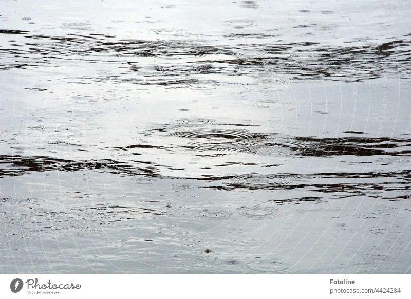 Regen fällt auf die Wasseroberfläche Regentropfen Regenwasser nass schlechtes Wetter Menschenleer Außenaufnahme Tag Schwarzweißfoto schwarz grau Tageslicht hell