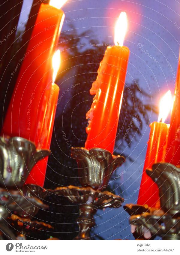 Kerzen im Regen Baum rot Fenster Wassertropfen Feuer Dinge Wachs Kerzenständer