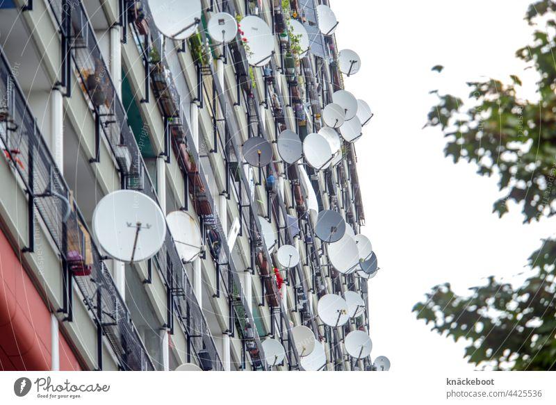 satellitenschüsseln satelitenschüssel Fernsehen Antenne Technik & Technologie Außenaufnahme Fernsehen schauen Satellitenantenne Berlin Farbfoto Fernseher Balkon