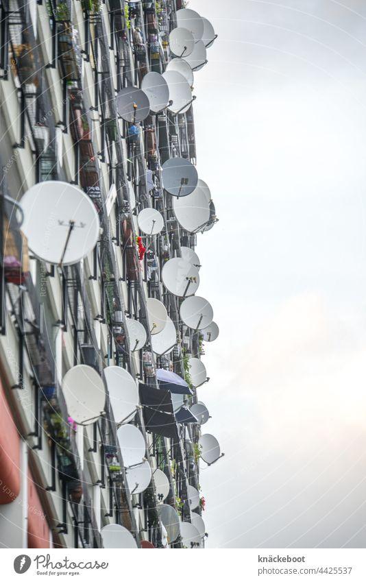 satellitenschüssel 2 Satellitenantenne Antenne Haus Fernsehen Fassade Gebäude Technik & Technologie Farbfoto Empfang Fernseher Tag Kommunizieren Außenaufnahme
