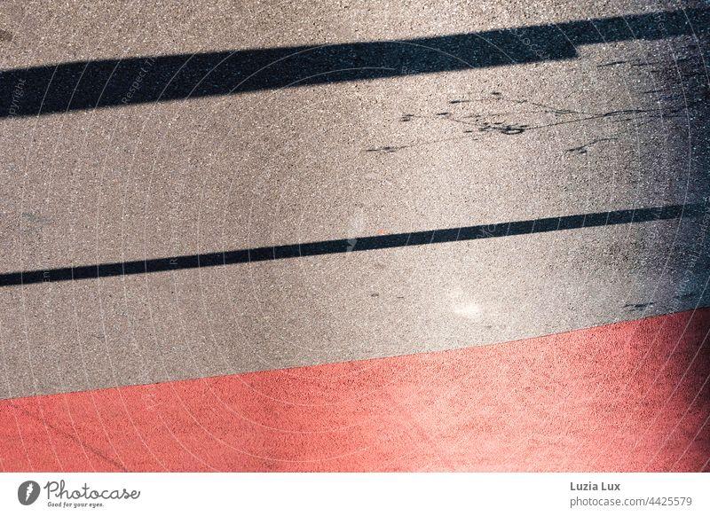 Gehwegmarkierung rot und grau, mit Schatten von zarten Halmen am Rand Sonnenlicht Sonnenschein hell grell Kontrast Sommer Fahrbahnmarkierung Gegenlicht Stadt