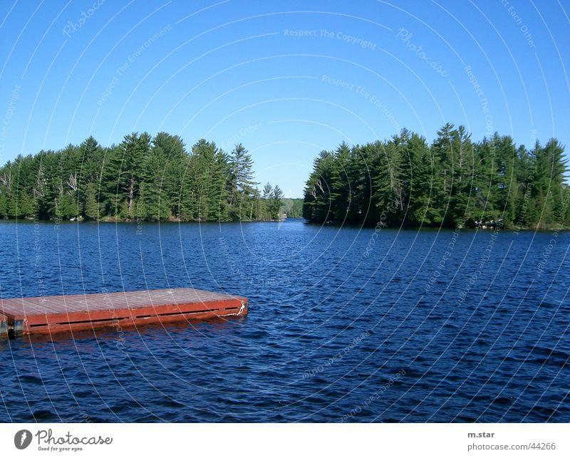 Steg ins Wasser #2 Wasser Himmel blau rot Wald Horizont Steg