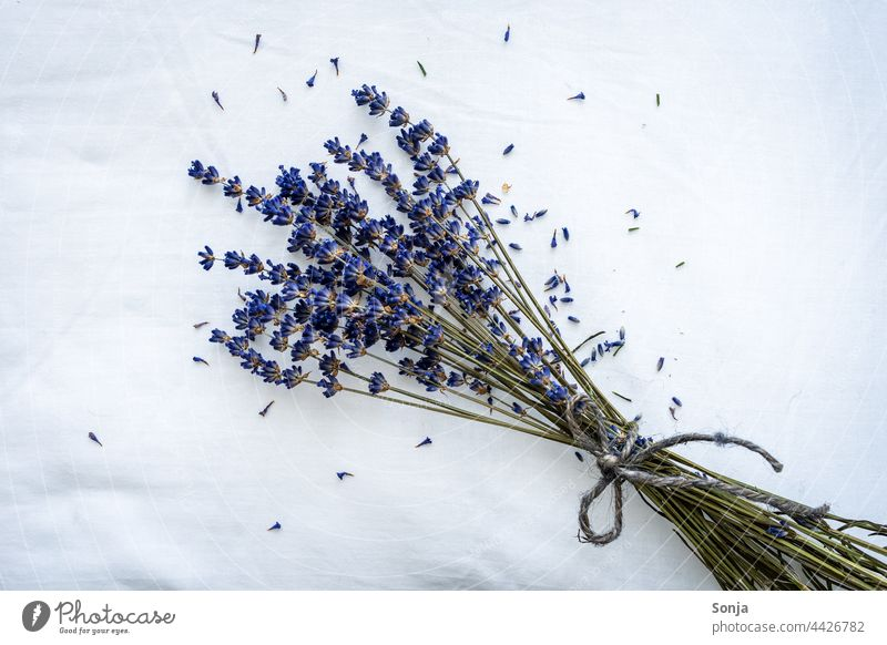 Ein Bund getrockneter Lavendel auf einem weißen Kopfkissen Bund 19 Kissen Aromatherapie duftend beruhigend schlafen Schlafzimmer Draufsicht lila träumen