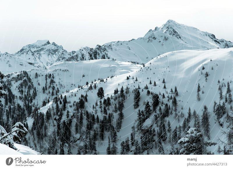Bergwelten im Winter. Hochfeld und im Hintergrund Schiedeck. Alpen Berge u. Gebirge Natur Gipfel Schneebedeckte Gipfel Ferien & Urlaub & Reisen Schönes Wetter