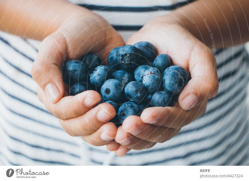Eine Handvoll Blaubeeren in den Händen eines kleinen Mädchens Kind Beteiligung reif roh Frucht Beeren Gesundheit Snack Dessert lecker blau streifen