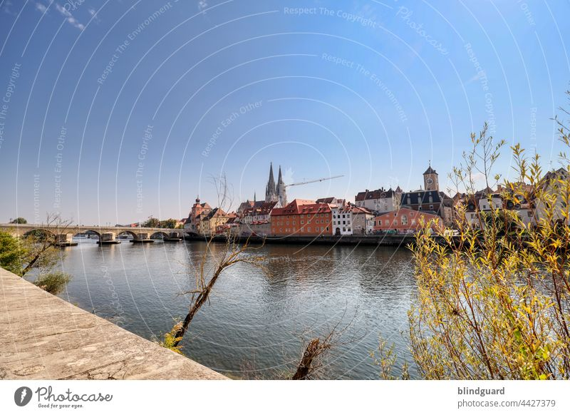 Regensburg im Sonnenschein Donau Dom Kran Sehenswürdigkeit Außenaufnahme Ferien & Urlaub & Reisen Farbfoto Sommer Deutschland Schönes Wetter Wahrzeichen