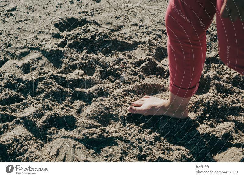 Barfuß am Nordseestrand Füße Sommer Meer Fuß Beine Zehen Haut erfrischend abkühlen abkühlung Erfrischung Erholung Mensch Frau Insel Küste Strand Wattenmeer