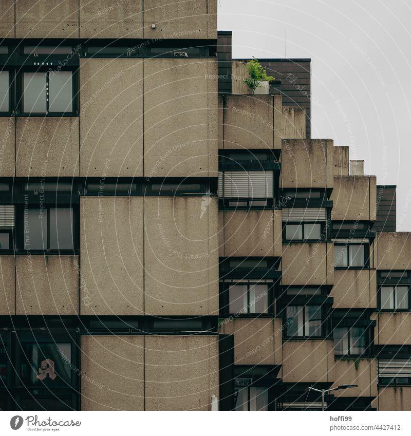 dunkel düstere Aussenfassade eines 70er Jahre Wohnhauses Architektur Balkone Fassade Gebäude urban Großstadt Appartement Design Klotz wohnbedingt Struktur Stadt