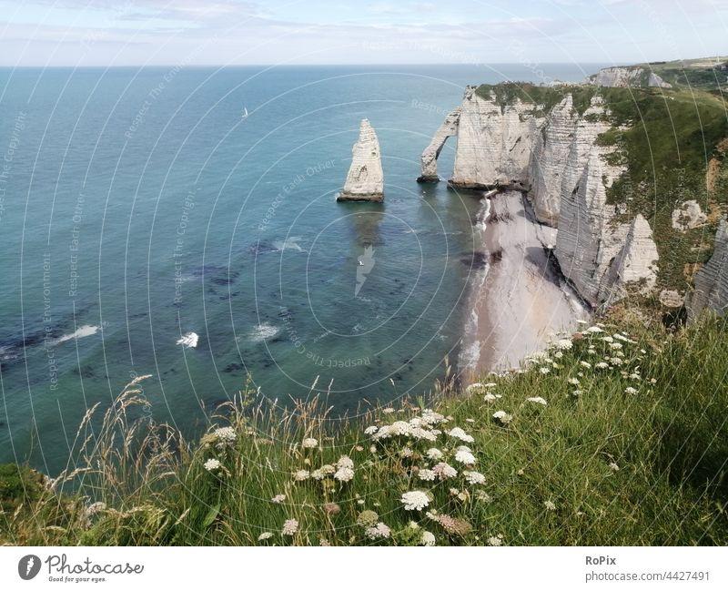 Steilküste in der Nähe von Etretat. Normandie Kanalküste Meer Fels Stein Seegang Strand beach Küste sea Frankreich france Nordsee Ozean Sandstrand Urlaub