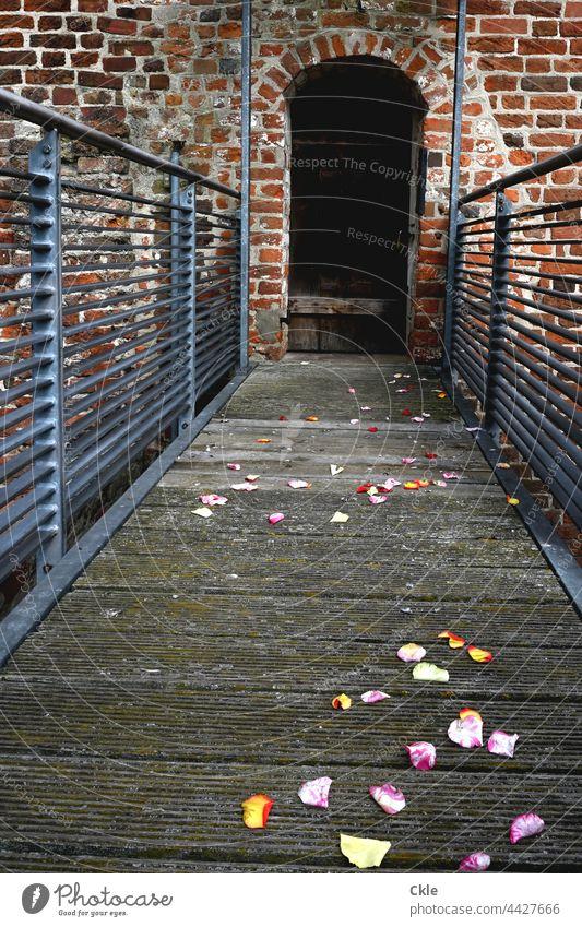 Blumiger Weg zu verschlossener Tür Blüten Mauerwerk Turm Gang Hochzeit Feier Überbleibsel Erinnerung Mittelalter Wand Bauwerk Architektur Fassade