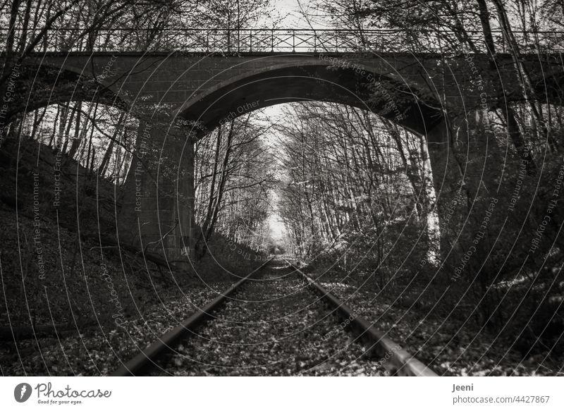 Alte Bahnschienen im Wald Bahnstrecke Bahnanlage Schienenverkehr Schienennetz Eisenbahn Gleise Verkehr Verkehrswege Menschenleer verlassen Waldlichtung