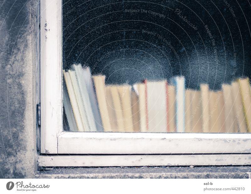 Bücher Erholung Freizeit & Hobby lesen Häusliches Leben Haus Bildung Schule Studium lernen Medien Buch Bibliothek Mauer Wand Fenster Glas alt einfach trist
