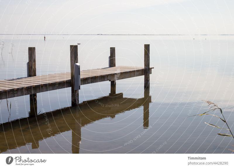 Mit Anlauf in Wasser? Nein, schauen, hören... Steg Fjord Holz Spiegelung Ruhe Besinnung Stille Horizont Natur Landschaft Reflexion & Spiegelung Idylle