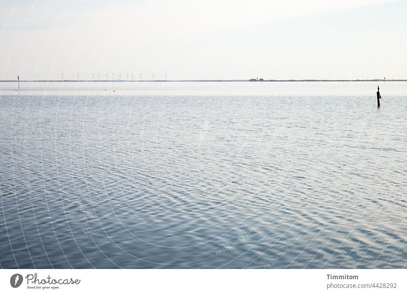 Blick auf das Wasser eines Fjordes Wellen ruhig Besinnung Land in Sicht Windräder Dänemark Natur Ferien & Urlaub & Reisen Menschenleer ästhetisch Küste Horizont