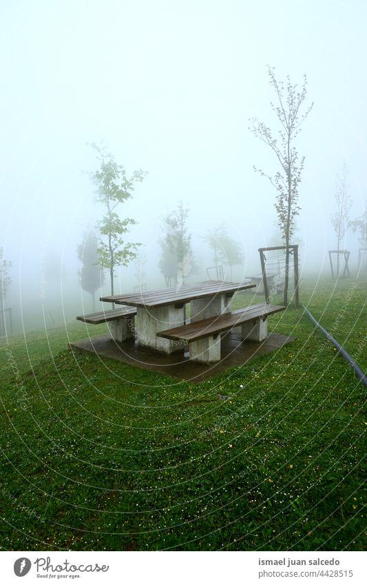 Holzbank in den Bergen an nebligen Tagen Berge u. Gebirge Wald Nebel Herbst Winter stimmungsvolle Atmosphäre launisches Wetter Bank hölzern Park im Freien