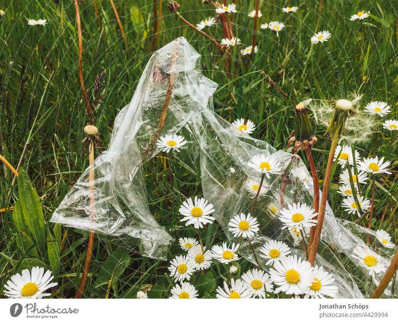 Umweltschmutzung auf der Wiese Müll egoistisch Plastik Plastiktüte Plastikfolie Blume grün Gras draußen natur Umweltverschmutzung Kunststoff Recycling
