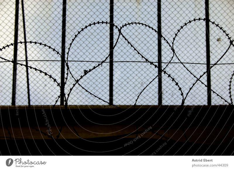 Gefängnis dunkel Zaun Gitter gefangen Justizvollzugsanstalt Stacheldraht Maschendraht