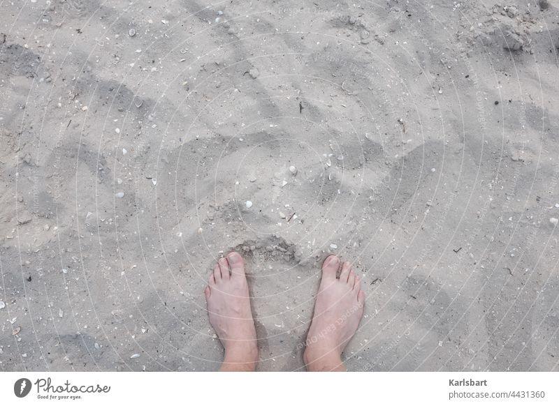 Füße in den Sand strecken Füße hoch Strand Sommer Fuß Barfuß Erholung Zehen Ferien & Urlaub & Reisen Küste Sommerurlaub Sandstrand Sonne Farbfoto Außenaufnahme