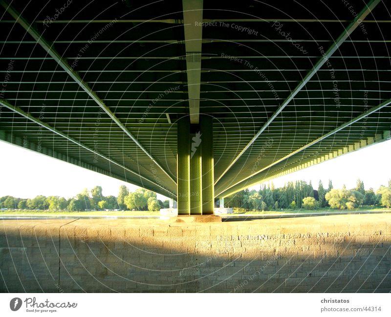 A4 über den Rhein in Köln Natur Wasser Baum Sonne grün Stein Küste Brücke Autobahn Stahl Bauwerk unter einer Brücke