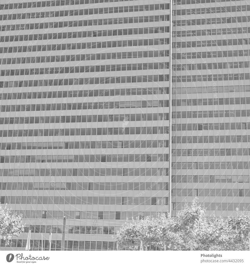Fasade eines Hochhauses in Schwarzweiß Schwarzweißfoto grau Fassade Fenster Architektur Gebäude Haus Stadt Außenaufnahme Menschenleer Tag Bauwerk trist Wand