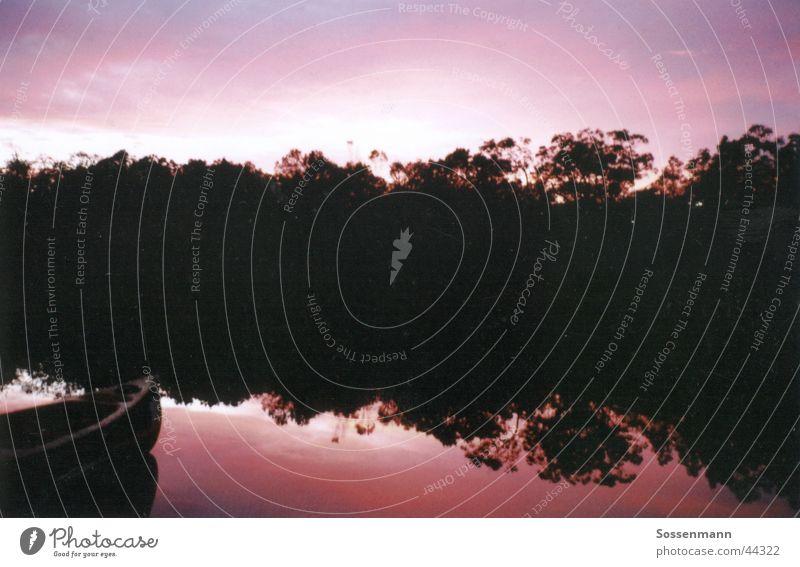 Sonnenaufgang Wasser Himmel Ferien & Urlaub & Reisen Erholung Freiheit wandern rosa Pause Fluss Romantik Bach Australien Kanu Abenddämmerung Glätte