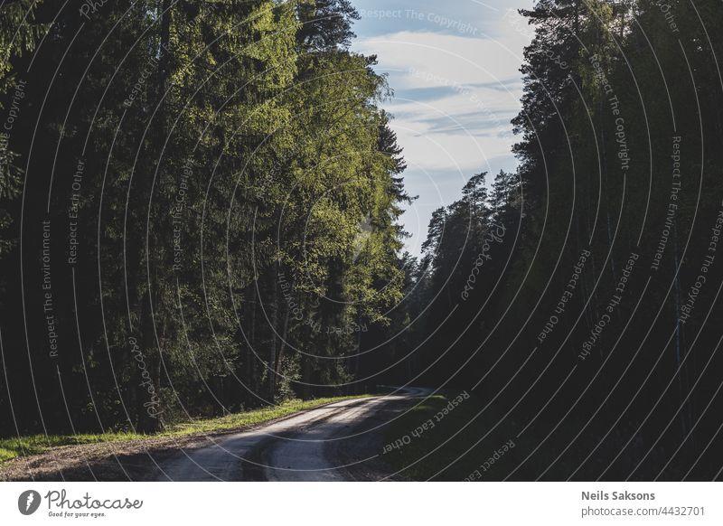 Kurve auf einer Schotterstraße im Wald. Schöne übliche lettische Landschaft. Herbst Hintergrund schön Wegbiegung Wolken Eckstoß Morgendämmerung Ausflugsziel