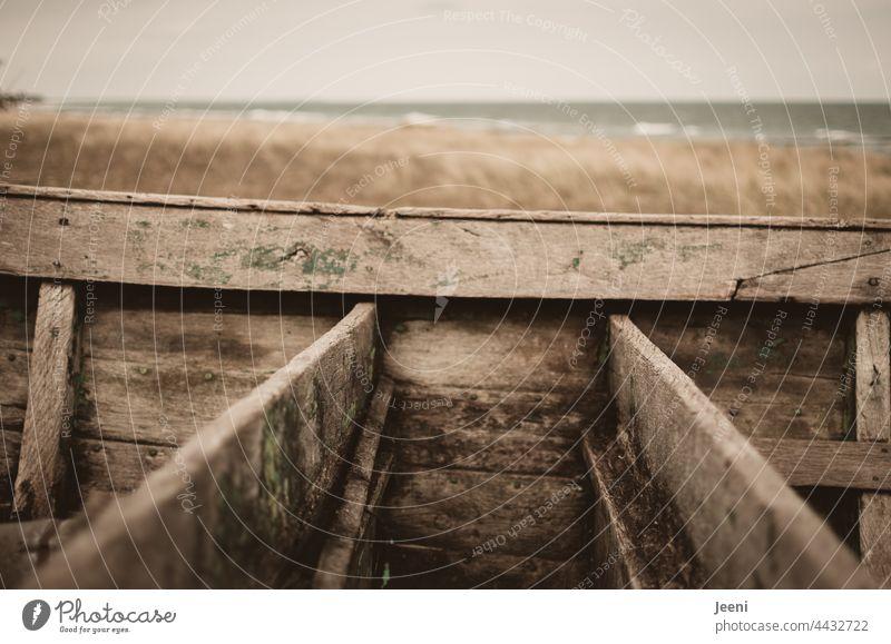 Schiffbrüchig mit einem Boot aus Holz am Strand Holzboot Holzschiff schiffbrüchig Stranddüne Düne Dünengras Meer Küste Sand Nordsee Ostsee Nordseeküste