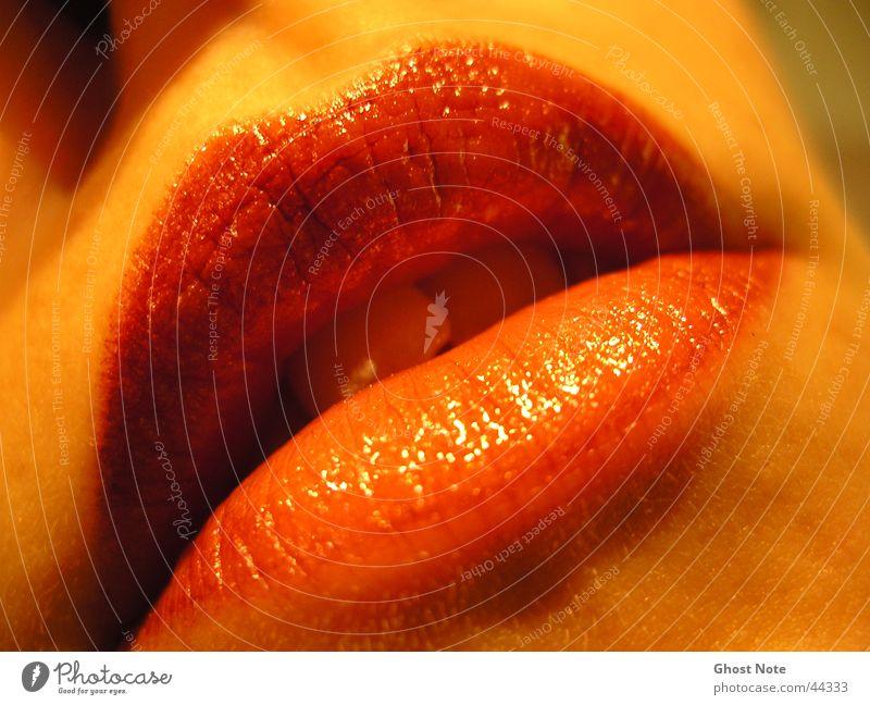Sinnlichkeit Lippen feminin Frau Küssen rot Lippenstift Mund Leidenschaft Zähne
