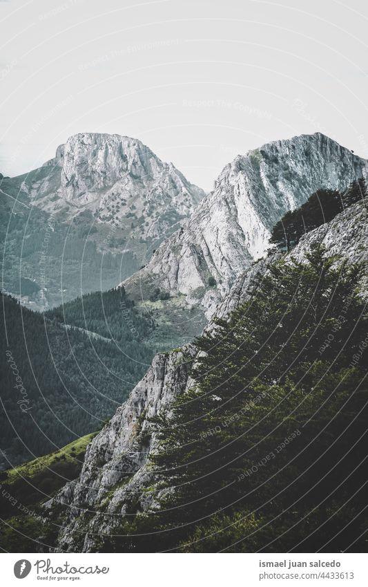Berge in der Herbstzeit in Bilbao, Spanien Berge u. Gebirge Bäume Wald Natur Landschaft im Freien Ansicht Hügel reisen Ort Ausflugsziel Ruhe Gelassenheit Stille