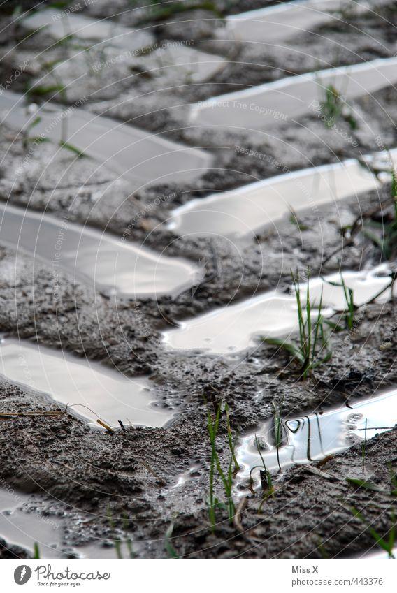Matschweg Wasser Wege & Pfade braun Regen dreckig Erde nass Fußweg Spuren schlechtes Wetter Schlamm Reifenspuren Autoreifen matschig