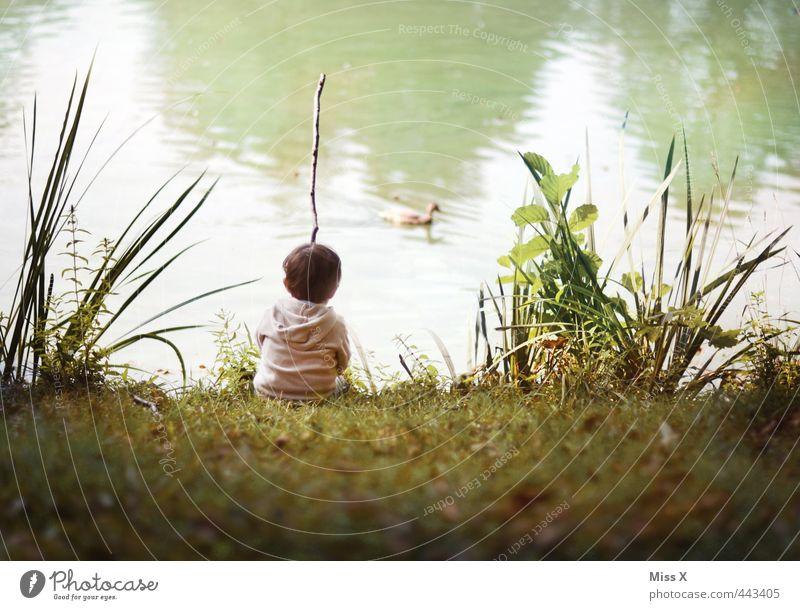 Angler Mensch Kind Sommer Erholung Einsamkeit ruhig Wiese Gefühle Junge Spielen See Stimmung Freizeit & Hobby Kindheit sitzen warten