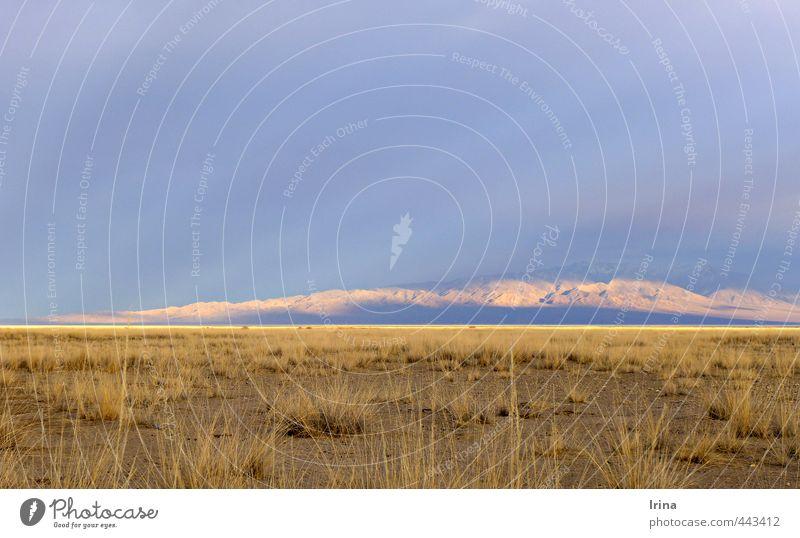 Fields of gold | Mongolia Himmel Natur Ferien & Urlaub & Reisen blau Sommer Einsamkeit Landschaft Ferne Gras natürlich Freiheit braun Horizont Abenteuer