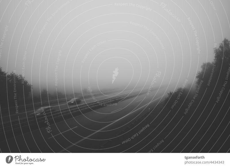 Autobahn im Nebel Straße Landschaft Asphalt Verkehr reisen Nebelstimmung Nebelwand morgens Morgennebel Morgenstimmung Menschenleer Außenaufnahme ruhig Idylle