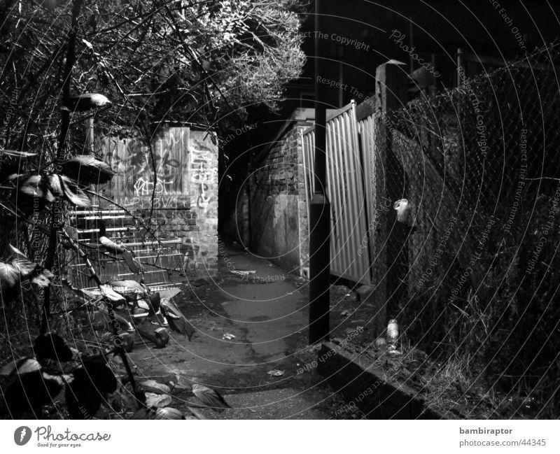 I see a darkness Straße dunkel Traurigkeit Wege & Pfade Angst dreckig Treppe trist Müll Laterne Geländer Panik Sorge Gasse Einkaufswagen
